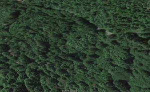 Headwaters Reserve low elevation north section (close in Google Earth view)
