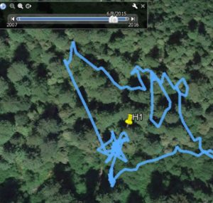 Trace of hike in Hyperion area