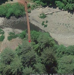 Bull Creek Giant Tree area, empty area where fallen tree was standing marked with X (Image from Google Earth)