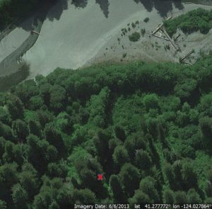 Redwood Creek hillside above north seasonal foot bridge, trees to fall marked with X (Image from Google Earth)